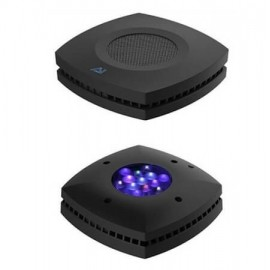 Prime-HD 55 w. Pantalla LED AI